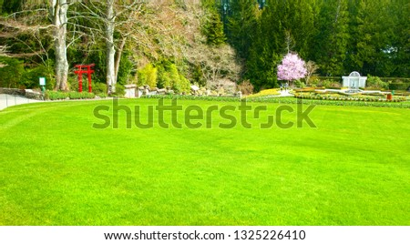 Lush Green Lawn Garden in the Spring with Lush colors, Victoria, Canada  #1325226410