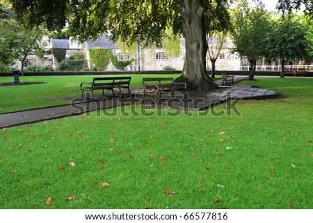 Lush Green Lawn in a Public Park - stock photo
