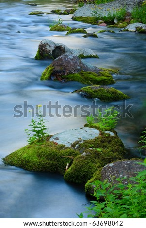 Lush green moss covers rocks in a beautiful blue mountain stream, Montana.
