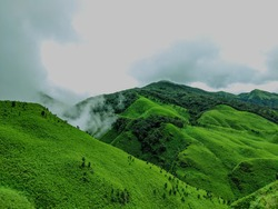 Lush, green mountains of Dzuku valley, Nagaland, India. These valleys are always greenery with mountains.