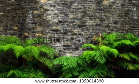 Lush green plant leaves and stone wall background. Green ferns background. Aged Stone brick wall texture. Vintage style plant wall. Fresh green fern banner. Interior design and architecture.