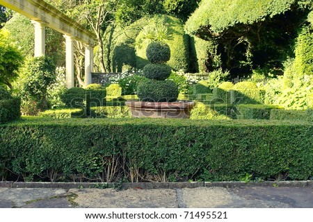 Lush Green Topiary in a Scenic Tranquil Garden - stock photo