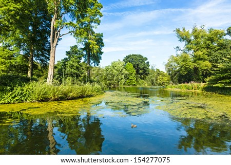 Lush Green Woodland Park Reflecting in Tranquil Pond in Sunshine #154277075