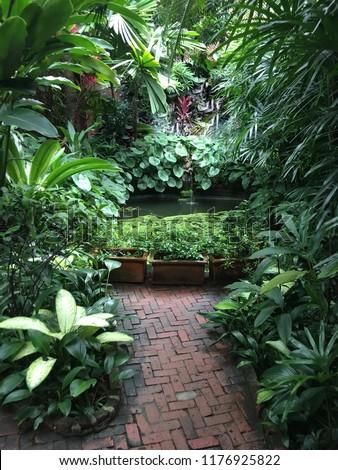 Lush Greenery Garden