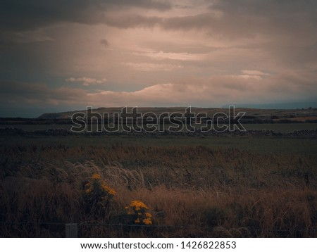 Lush grey & green mountains. Moody skies Moody background Moody sky Mountain clouds View nature landscape Mountains-view and sea #1426822853