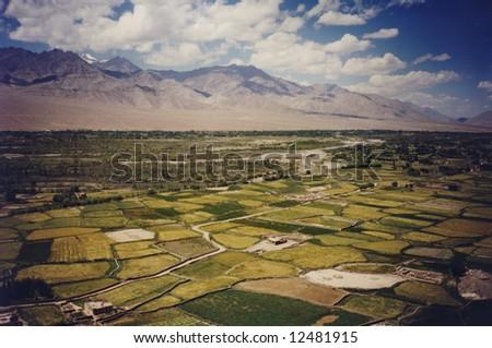 Lush Himalayan valley.  Ladakh.  India.