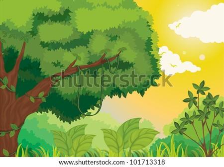 Cartoon Jungle Scene Lush jungle scene at sunset