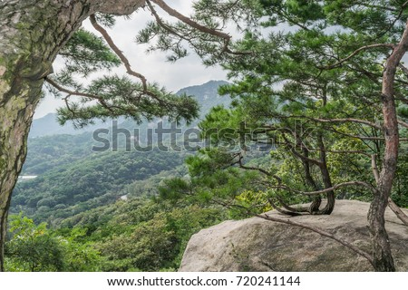 Lush Landscape-lush green mountains, trees and a big boulder, from Mount Bugak observation deck, in Samcheongdong Park, Seoul, South Korea #720241144