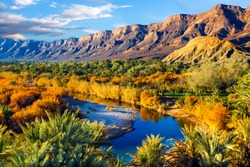 Lush oasis landscape in the Moroccan desert, with date palms and a blue river with reflections.  One of the biggest oases in Morocco. Adventure travel.