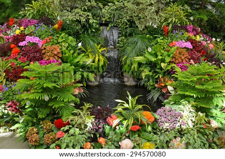 Lush tropical garden with assorted colorful flowers and plants