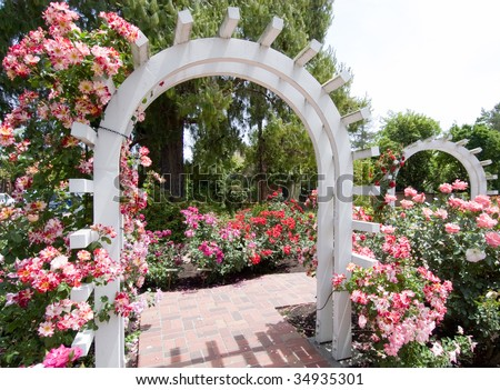 Luther burbank home gardens white arch and pink stock photo 34935301 shutterstock for Luther burbank home and gardens