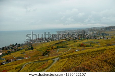 Lutry - Cully: Colourfull landscape of the Unesco world heritage Lavaux along Lake Genève.