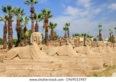 Luxor dromos or row of sphinx statues at Karnak temple, Luxor, Egypt  Stock photo ©