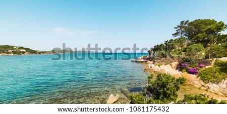 luxuriant vegetation and turquoise sea in Cala Girgolu #1081175432