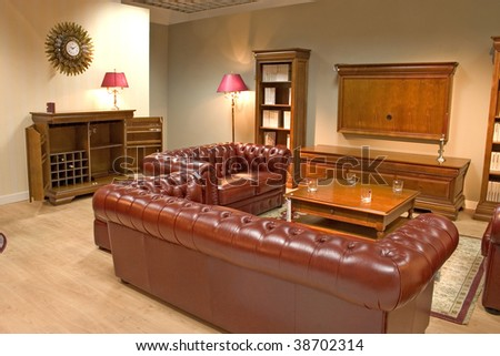 Luxurious And Cozy Dining Room With Expensive Leather Sofa And Arm ...