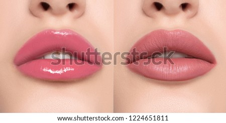 Luxurious bright beautiful female lips made up with lipstick and tint, various shades, matte and glossy, pink, make-up, for design, set, mock-up