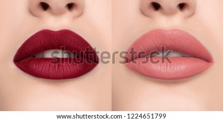 Luxurious bright beautiful female lips made up with lipstick and tint, various shades, matte pink and red, make-up, for design, set, mock-up