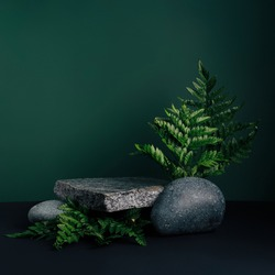 Luxurious empty product marble stone podium and forest green leaves on dark background. Concept scene stage for promotion, sale, presentation or cosmetic. Black minimal mock up template.
