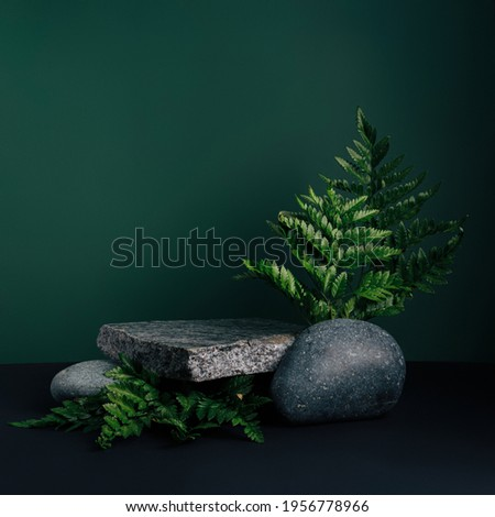 Luxurious empty product marble stone podium and forest green leaves on dark background. Concept scene stage for promotion, sale, presentation or cosmetic. Black minimal mock up template. Photo stock ©