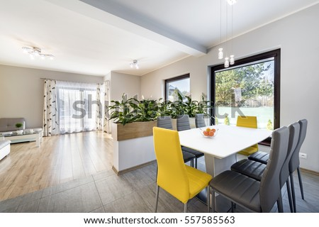 Luxurious living room with dinning table and a fancy flowering plant