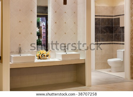 Luxurious modern bathroom with water sinks and toilet bowl