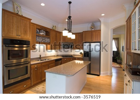 luxurious modern kitchen with appliances