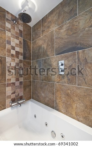 luxury bath tub with shower and massage feature
