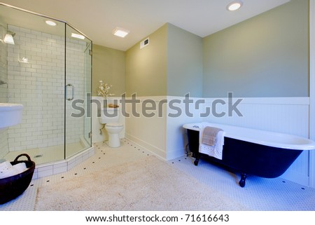 Luxury bathroom with iron tub and walk-in shower. Green mint fresh walls.