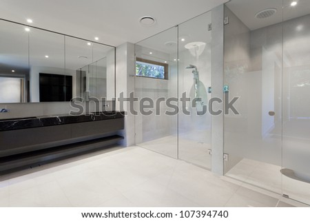 Luxury bathroom with mirrors, sink, shower and toilet