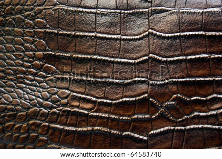 luxury brown crocodile leather texture
