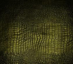 luxury dark crocodile texture
