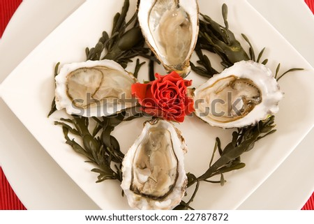 Luxury dish of oysters and a red rose