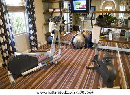 Luxury home gym with exercise equipment.