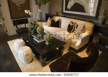 Home Decorating on Luxury Home Living Room With Contemporary Decor  Stock Photo 10606717