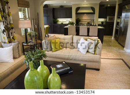 Luxury home living room with contemporary decor.