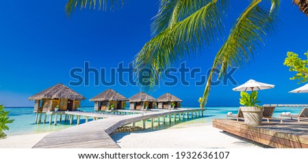 Luxury hotel with water villas and palm tree leaves over white sand, close to blue sea, seascape. Beach chairs, beds with white umbrellas. Summer vacation and holiday, beach resort on tropical island