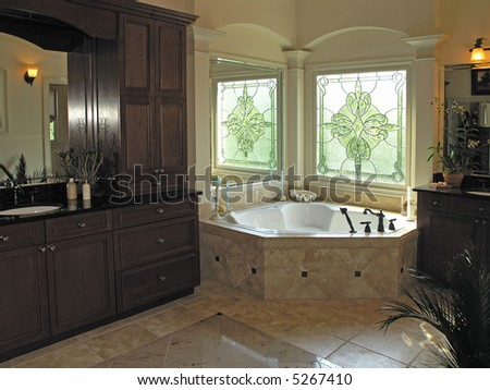 Luxury House Marble Bathroom in window light