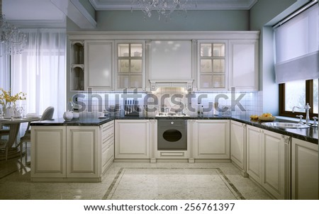 Luxury kitchen interior 3D images