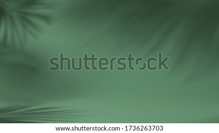 luxury leaf shadow leaves in blank green natural background. concept scene stage showcase, product, nature, perfume, promotion sale, banner, presentation, cosmetic. 3D render
