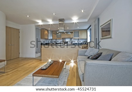 luxury open plan living room with breakfast bar and dining area