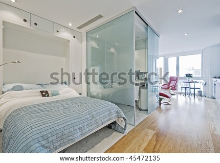 luxury studio apartment with fold down bed
