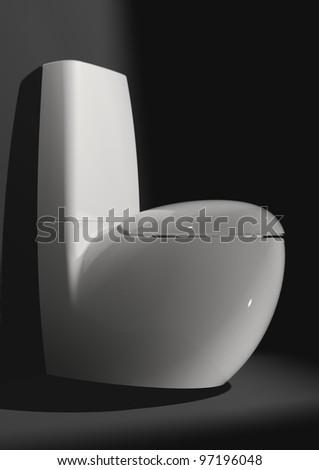 Luxury toilet in the bathroom