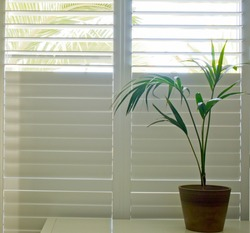 Luxury white indoor plantation shutters
