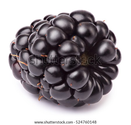Lying blackberry isolated on white background with clipping path. One of the best isolated blackberries you have seen. Blackberry isolated, blackberries.