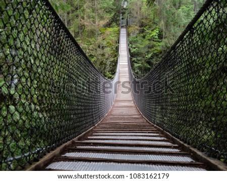 Lynn Canyon Suspension Bridge in Lynn Valley Provincial Park.  Narrow bridge hanging over canyon. North Vancouver. British Columbia. Canada.