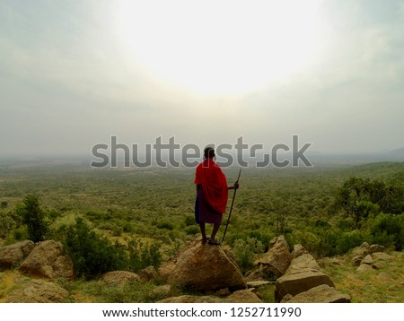 Maasai warrior standing with his spear overlooking his land in Kenya