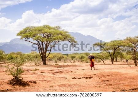 Maasai woman carrying heavy load through savanna, Kenya