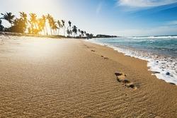 Macao beach. Wild caribbean coast of Atlantic ocean with waves, travel destination. Dominican Republic