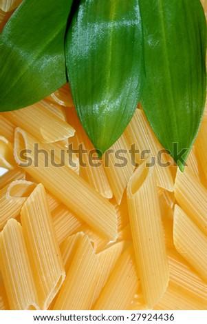 macaroni with herbs