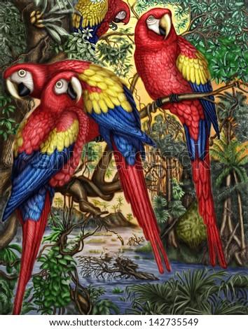stock-photo-macaw-parrots-142735549.jpg